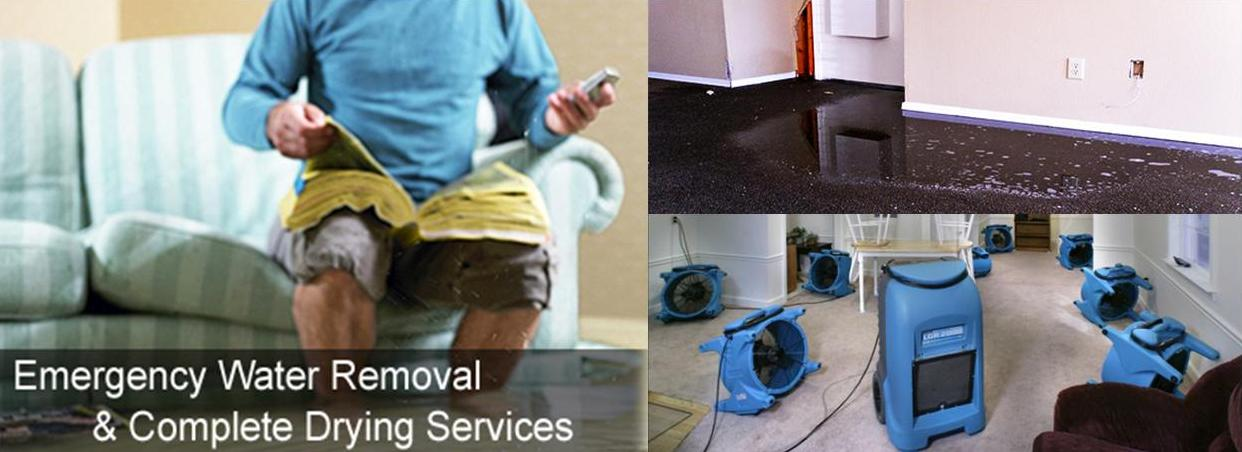 North Myrtle Beach Carpet Cleaning